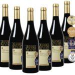 12 Flaschen Bodegas Olarra Cerro Añon Rotwein für 34,98€