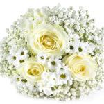 Miflora: Blumenstrauß Fiona für nur 19,80€ inkl. Versand
