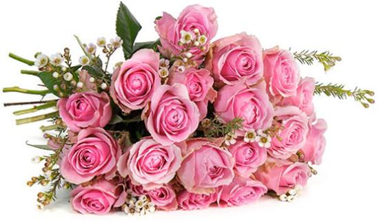valentinstag angebot günstig rosen strauß