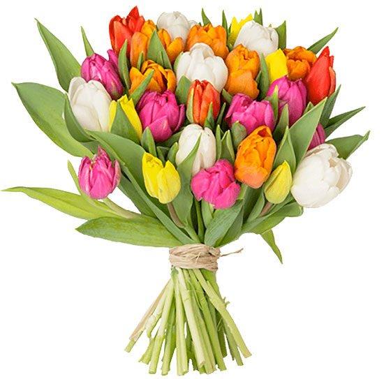 Blumenstrauß Tulpen Angebot Deal