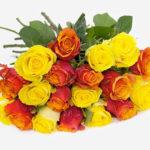 Rosenstrauß Sunshine mit 20 Rosen für 16,94€ inkl. Versand