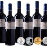 6 Flaschen des 4-fach prämierten Ursa Maior – 2014er Rioja DOCa Reserva Rotwein für 40,89€ inkl. Versand