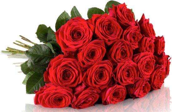 Rosenstrauß Blumenstrauß Angebot Rosen ONline günstig Kaufen Blumenladen