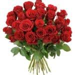 Rosenrausch mit bis zu 33 Rosen für 20,94€ inkl. Versand