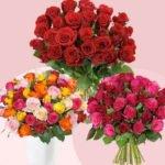 Rosen-Überraschungspakete mit 33 Rosen für 19,94€ inkl. Versand
