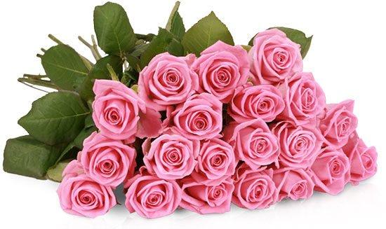 Rosenstrauß Blumenstrauß Rosen