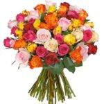 40 bunte Rosen für 24,98€ inkl. Versand