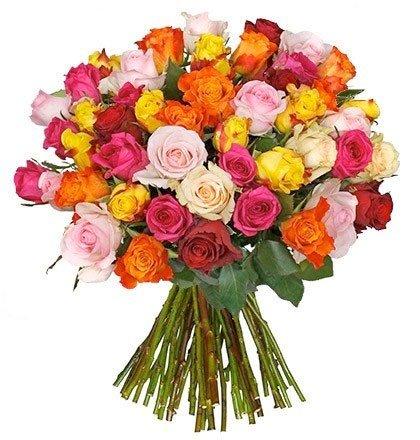 rosen angebot günstig blumenstrauß