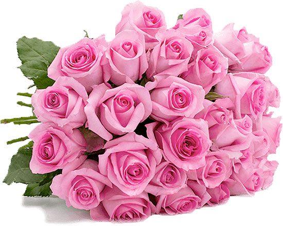 Pink Rosen Deal Angebot Blumenstrauß Rosenstrauß